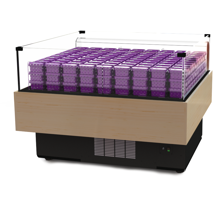 Single Deck High-Visibility Refrigerated Cases