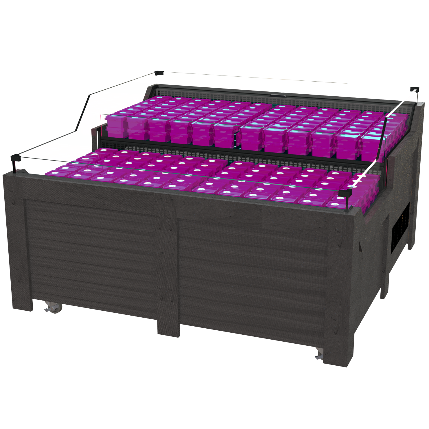 2-Tier High-Visibility Refrigerated Cases (5′-6'W)